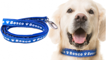 Large Personalised Dog Collar & Lead Set