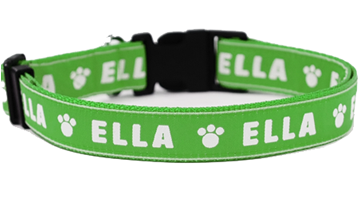 Large Personalised Dog Collars