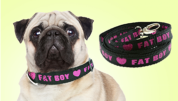Medium Personalised Lurex Dog Collar & Lead