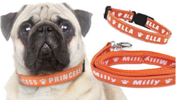 Medium Personalised Dog Collar & Lead Set