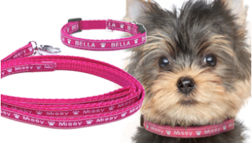 X Small Personalised Dog Collar & Lead Set