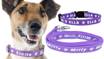 Small Personalised Dog Collar & Lead Set